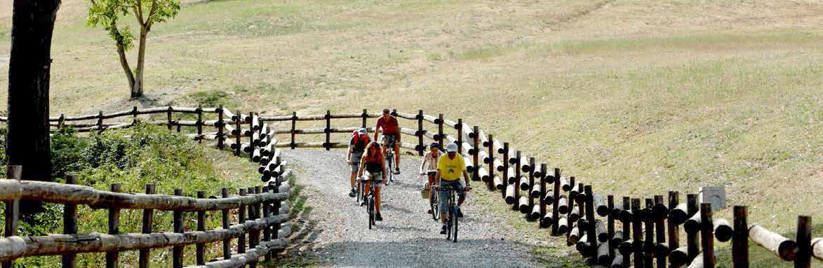 locandina Rivalta Bike foto