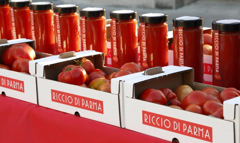 cassetta-pomodoro-riccio-2-web-1024x611